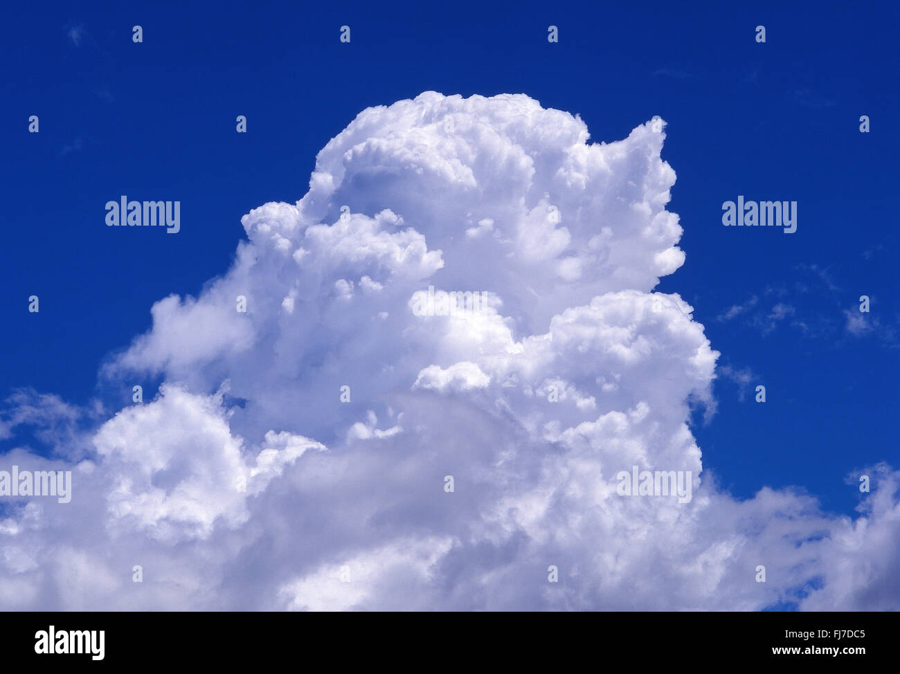 White cumulus clouds and blue sky, Berkshire, England, United Kingdom - Stock Image