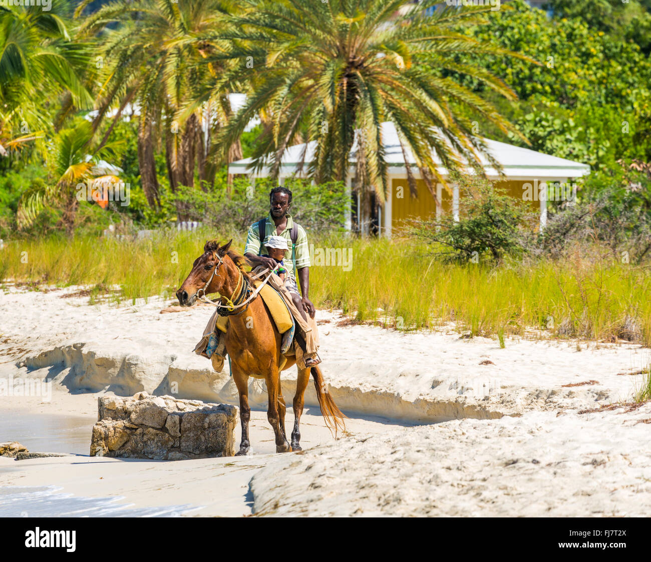 Local man with a small child riding a horse on the beach, Dickenson Bay, Antigua, Antigua and Barbuda, West Indies - Stock Image