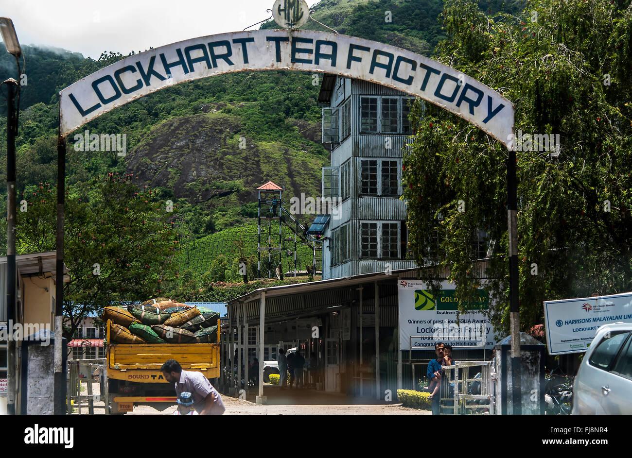 Lockhart tea factory, munnar, kerala, india, asia - Stock Image