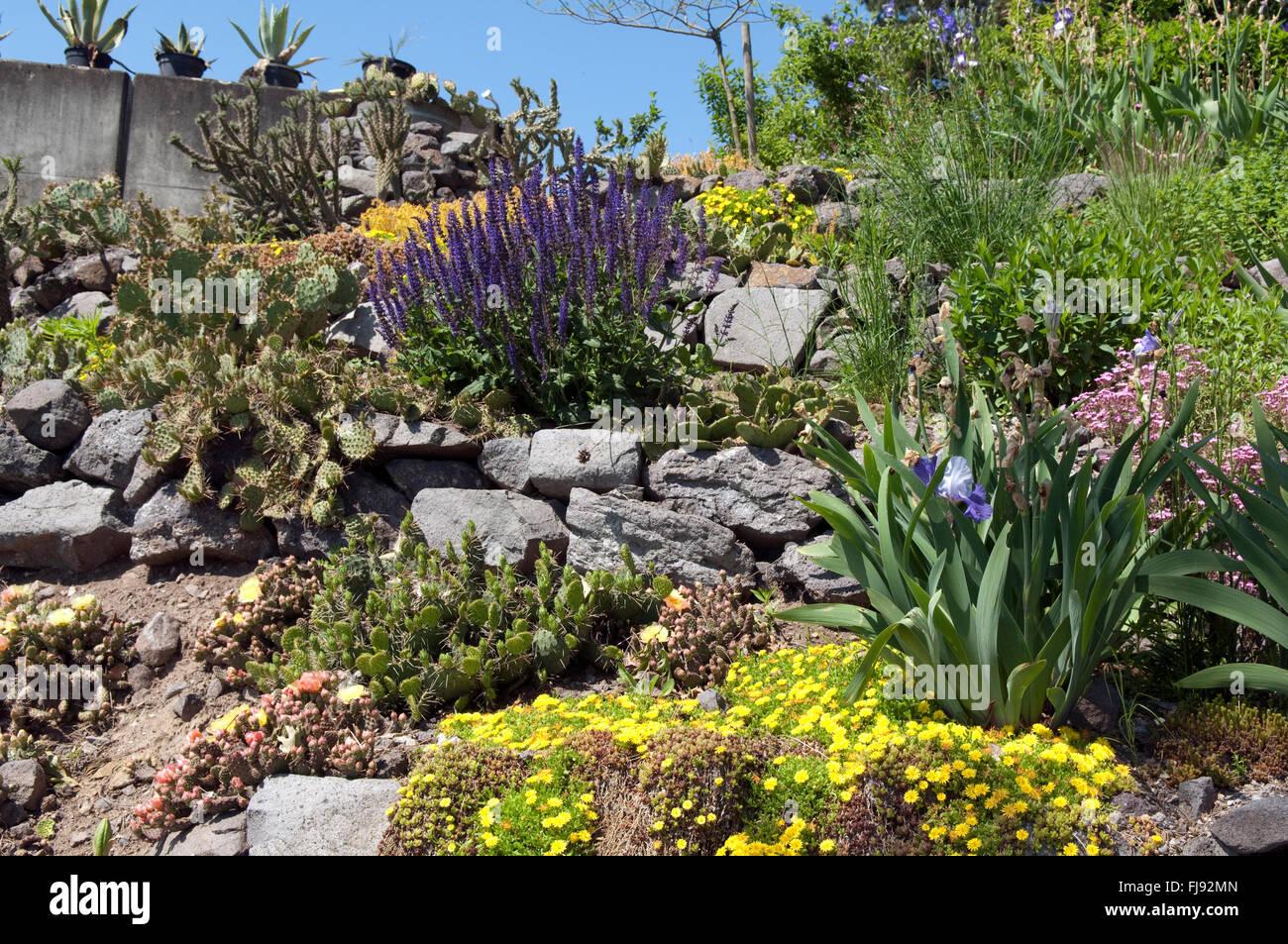 Steingarten Blumen Stock Photo 97315365 Alamy
