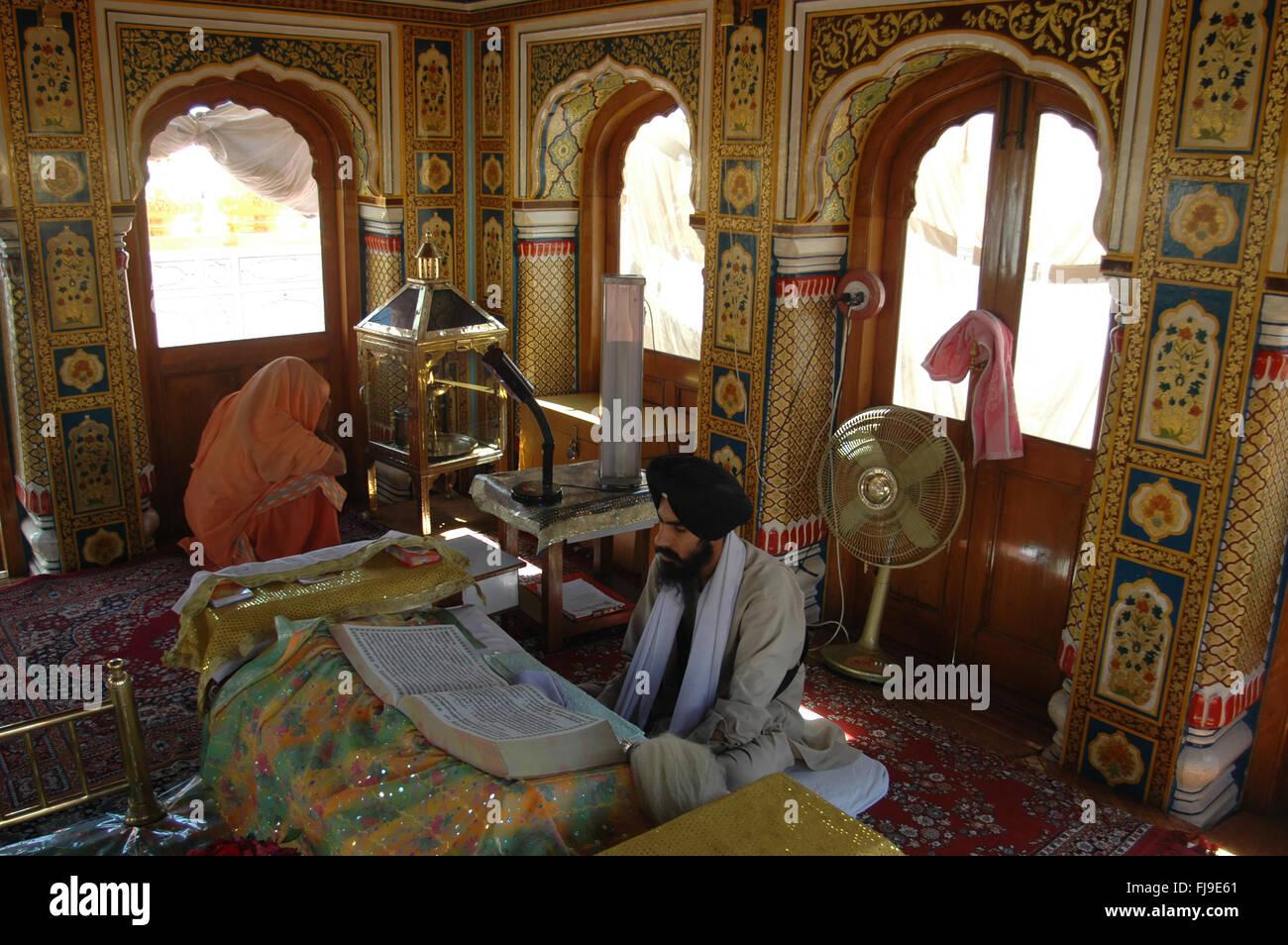 Sikh priest read adi granth golden temple at amritsar, punjab, india, asia  Stock Photo - Alamy