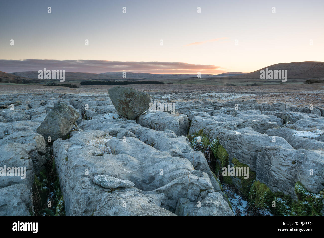Erratics on the limestone pavements in the Yorkshire Dales above Ribblesdale - Stock Image