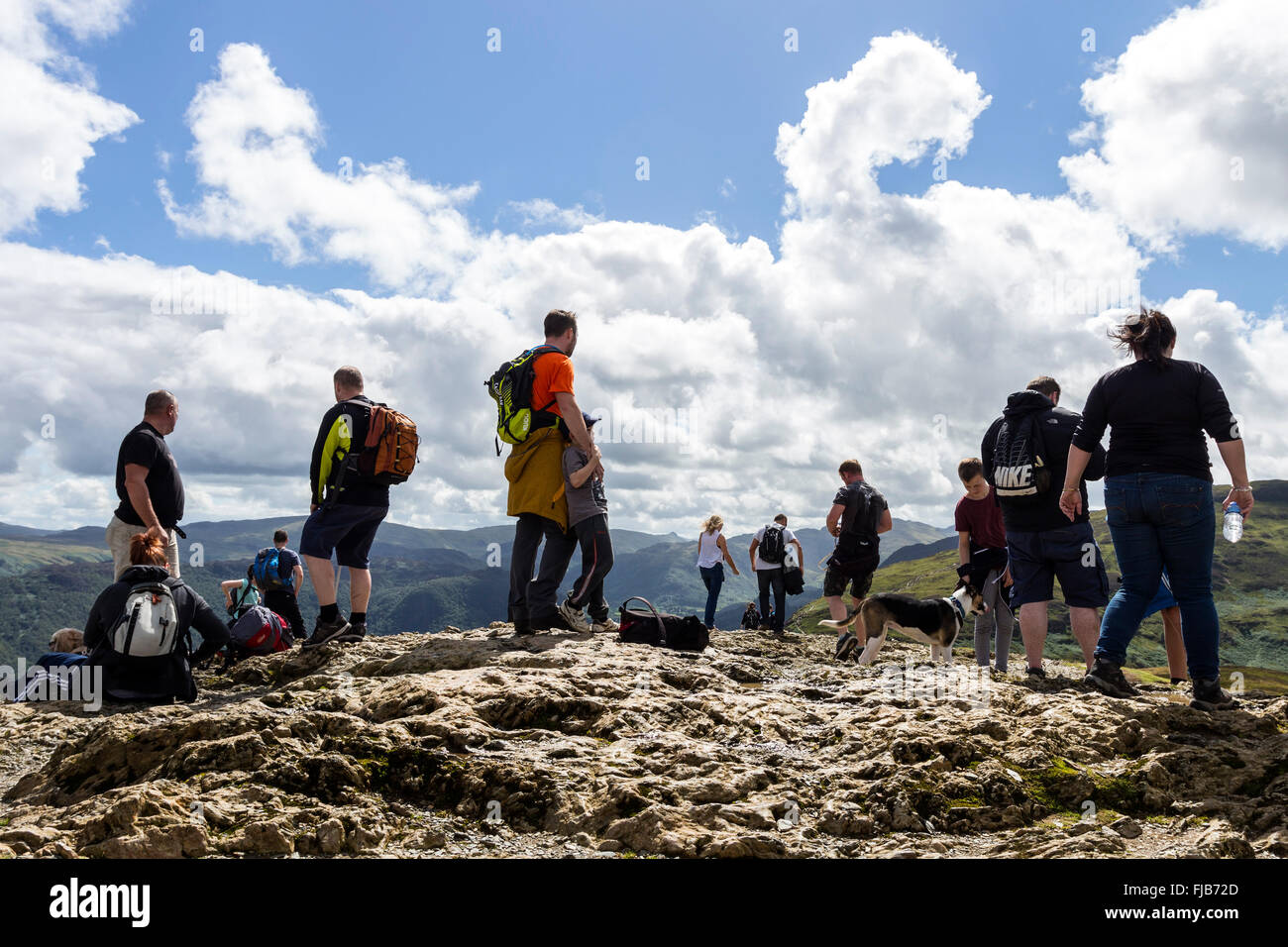 The Summit of Catbells on a Busy Summer Day, Lake District, Cumbria UK - Stock Image