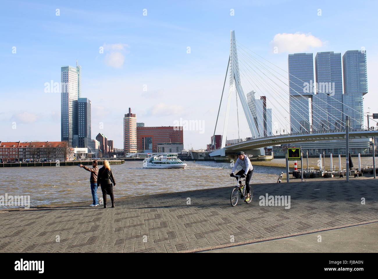 Erasmus bridge, Rotterdam, flanked by Maastoren, highest Dutch skyscraper (165m) & De Rotterdam complex (2013, - Stock Image