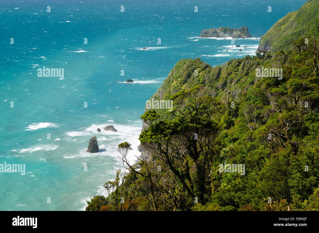 Wild coast with surf, rain forest with dense vegetation, turquoise sea, West Coast, South Island, New Zealand - Stock Image