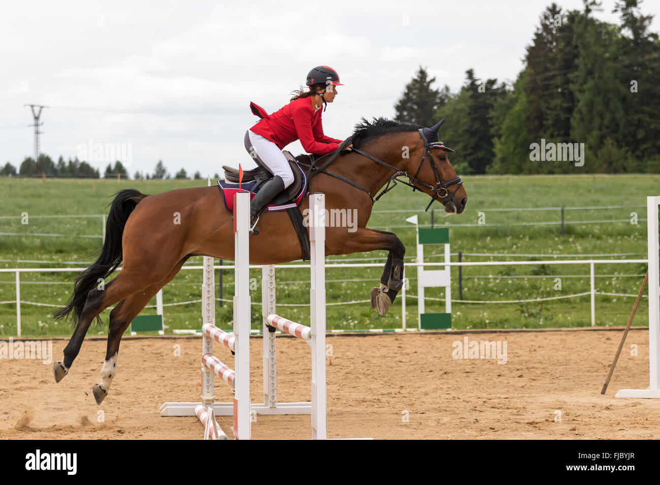 Side view of  horsewoman in red jacket that is jumping - Stock Image