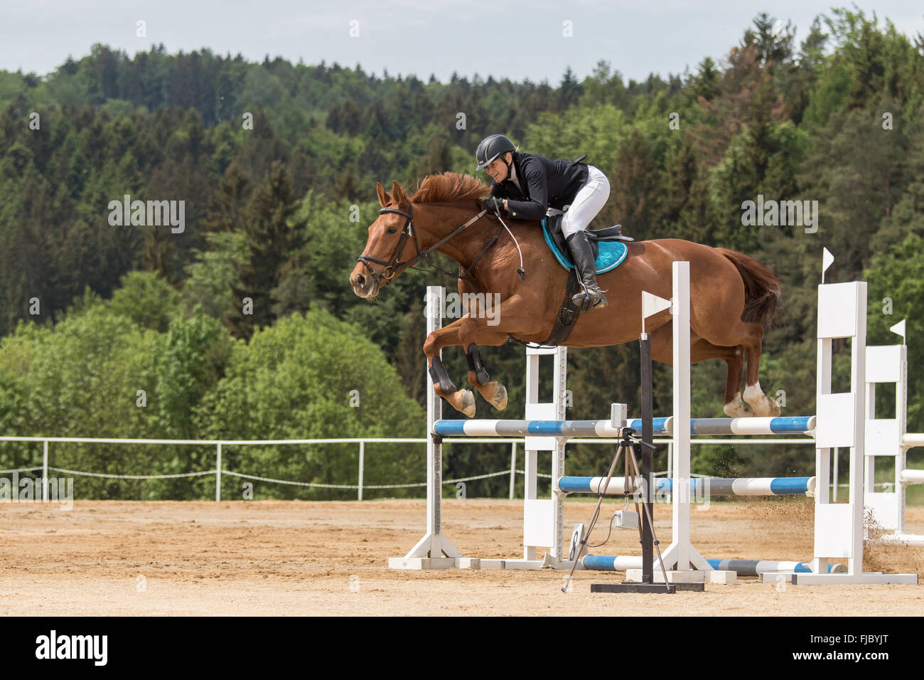 Side view of horsewoman in black jacket  that is jumping - Stock Image