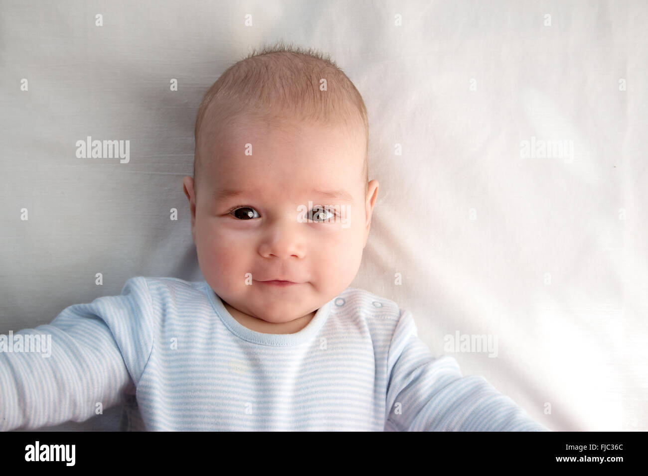 Three Month Old Baby Wrapped In Blue Blanket Stock Photo 97381604