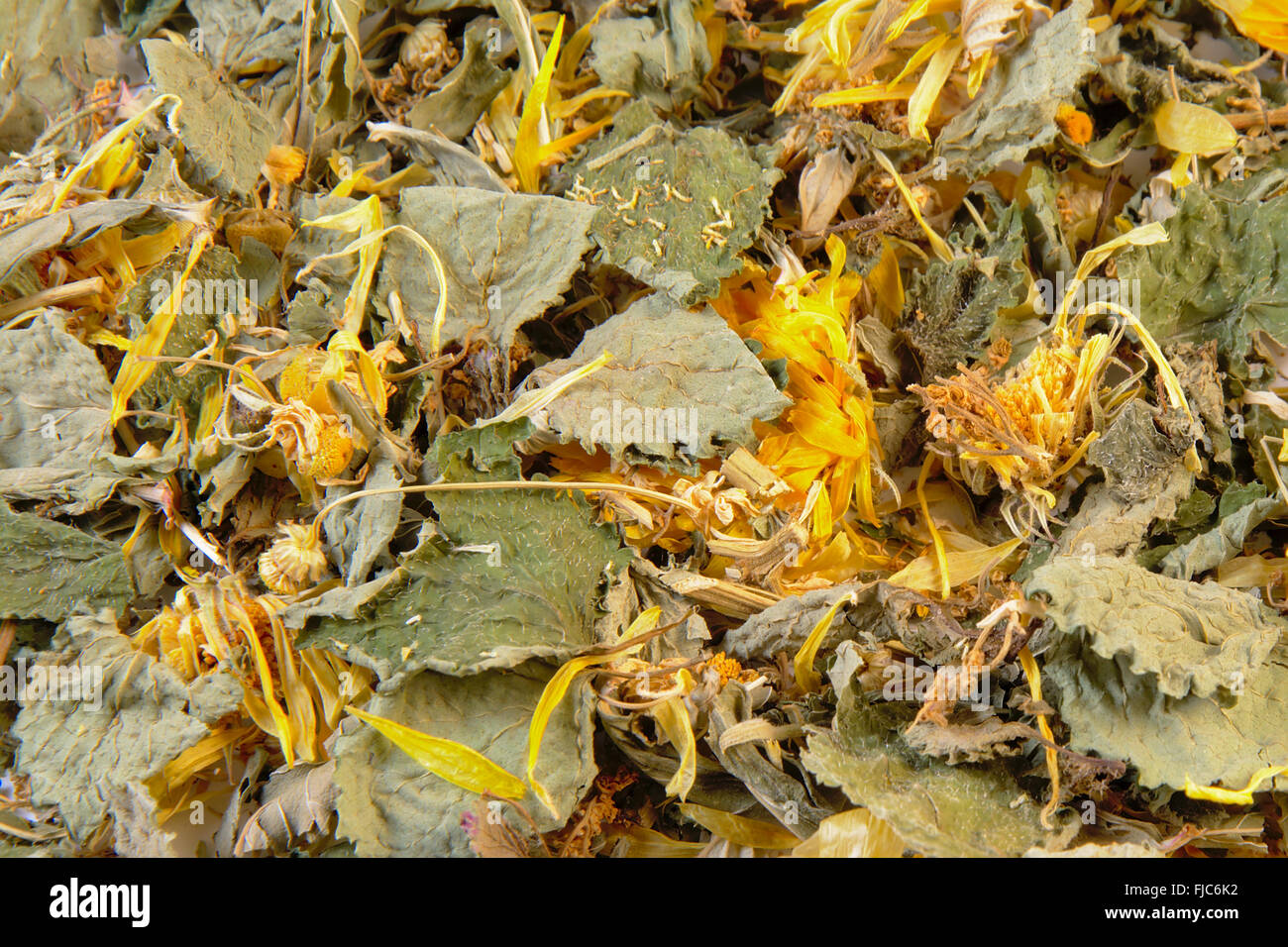 Background filled with herbal stomach and bowel supporting tea. ingredients: lemon, spearmint, chamomile, calendula, - Stock Image