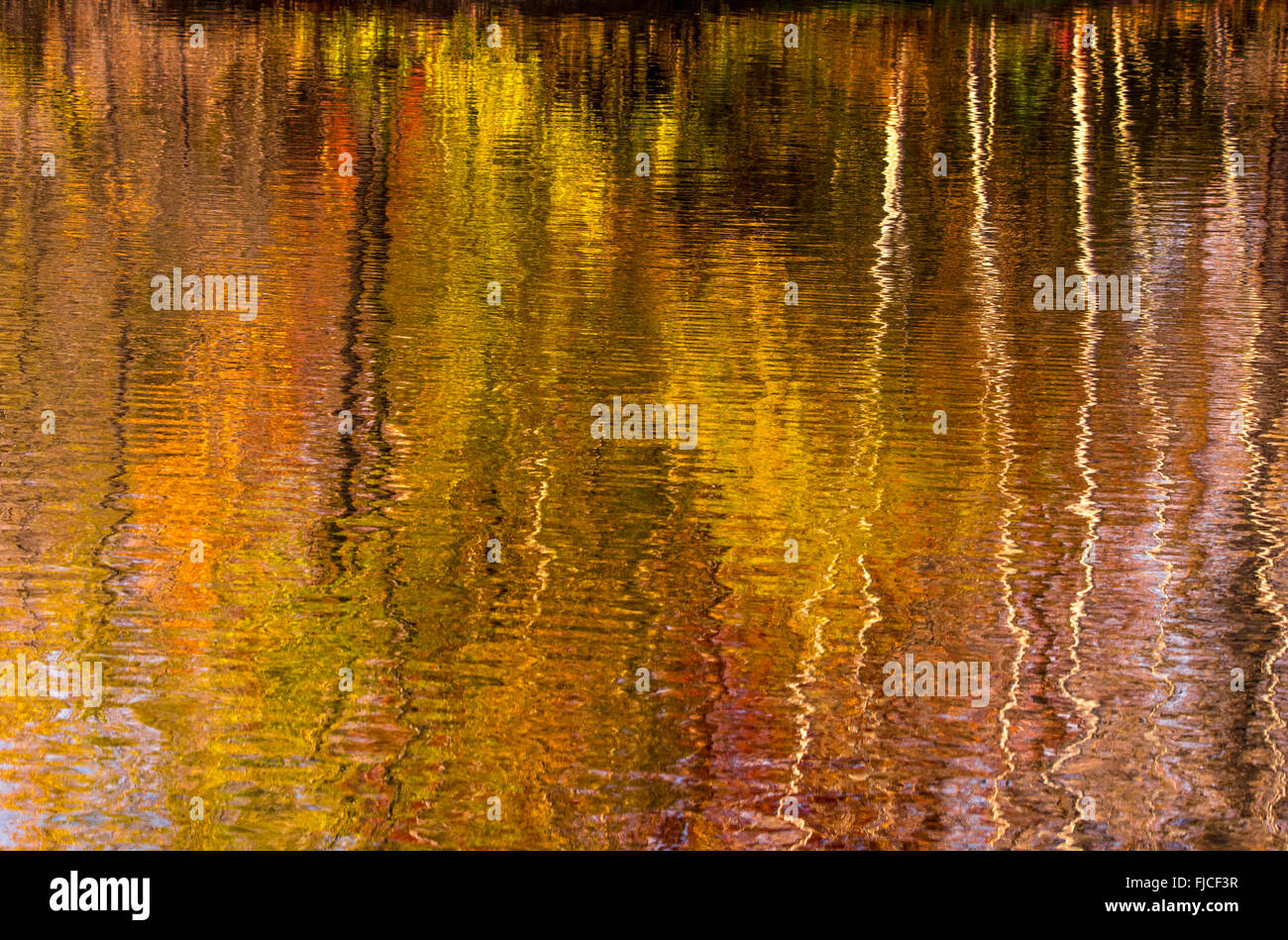 Close-up of Abstract  Autumn Water reflections patterns, USA - Stock Image