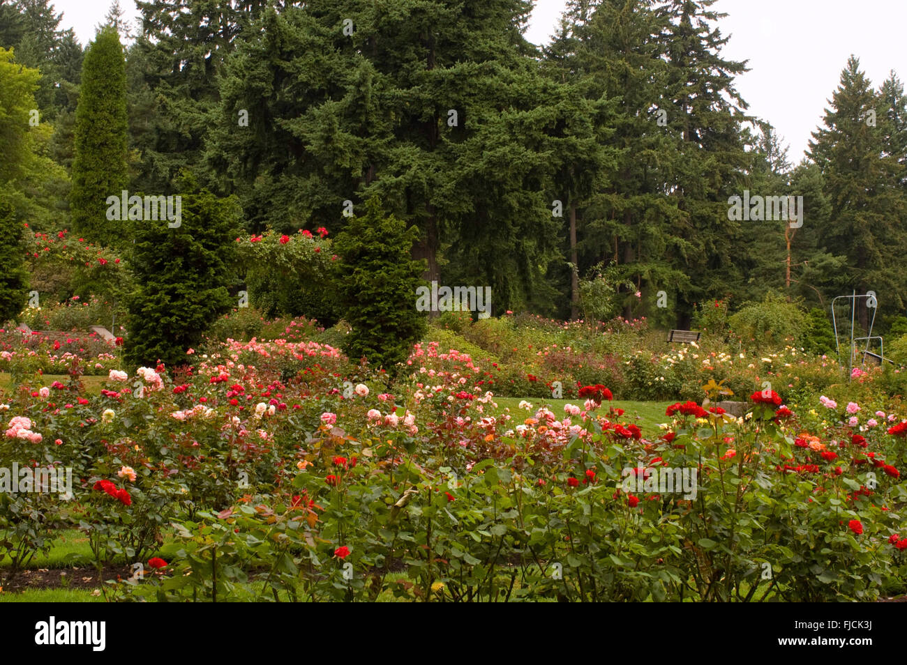 Mass Planting Stock Photos & Mass Planting Stock Images - Page 2 - Alamy