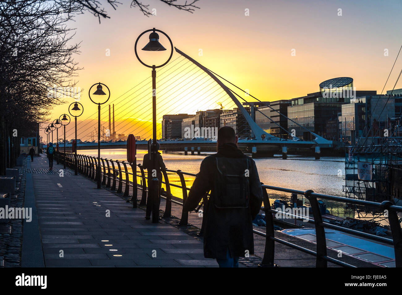 Samuel Beckett Bridge over River Liffey, Docklands area at dawn, Dublin, Ireland Stock Photo