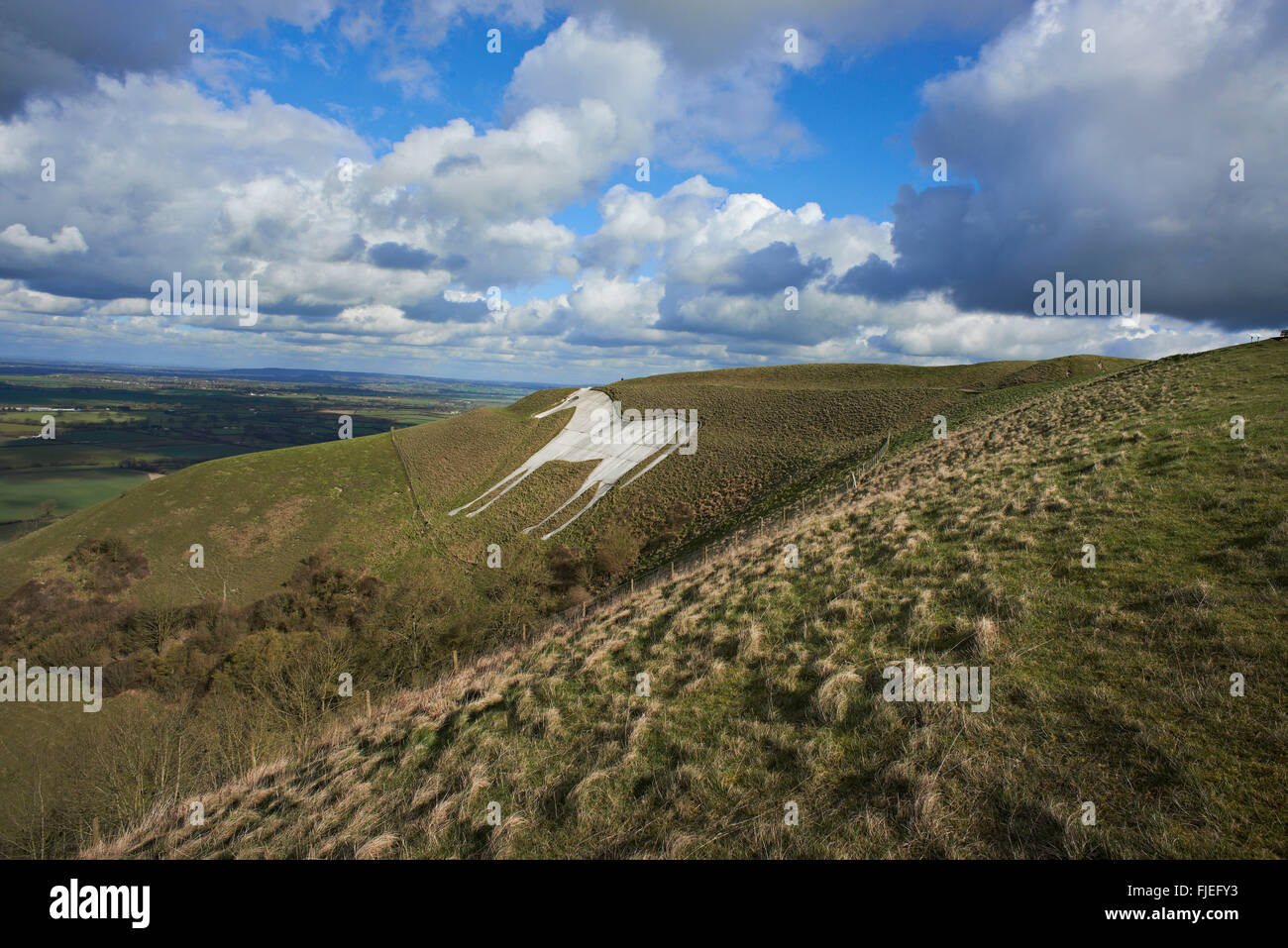 A landscape view of the White Horse at Westbury,  Wiltshire, Stock Photo