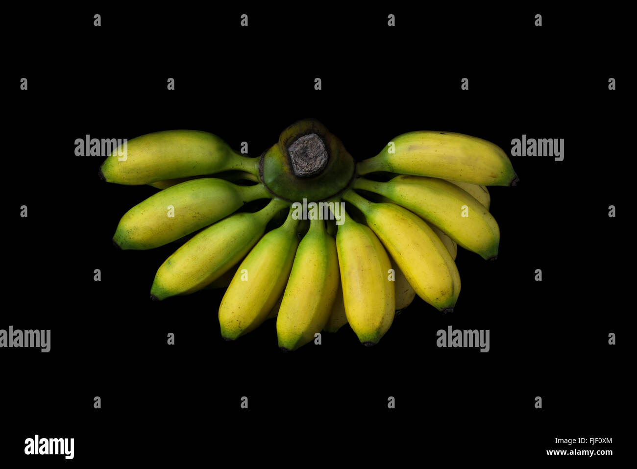 a kind of Thai banana isolated on black - Stock Image