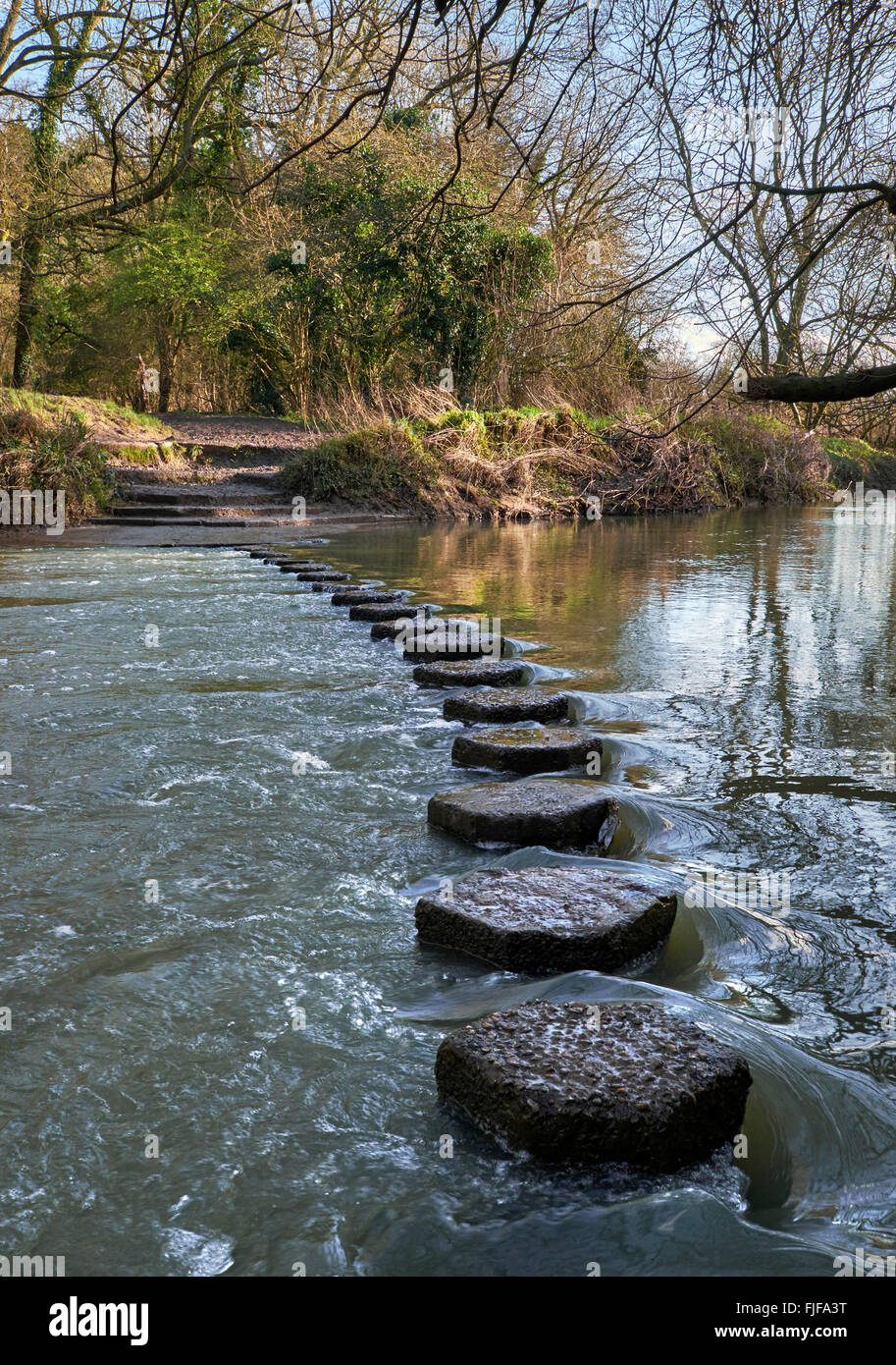 The Stepping Stones across the River Mole at the foot of Box Hill. Westhumble, near Dorking, Surrey, England. - Stock Image