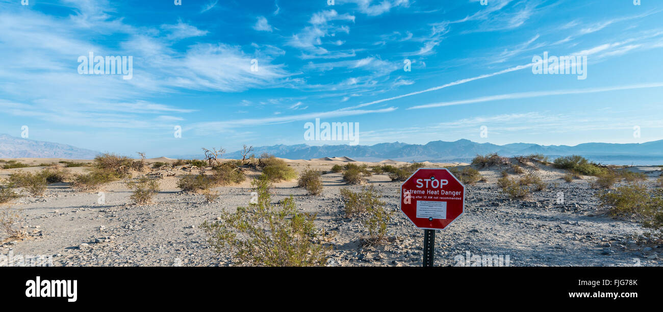 Sign lettering 'STOP Extreme Heat Danger' warning of heat, Creosote Bushes (larrea tridentata) in the Mesquite - Stock Image