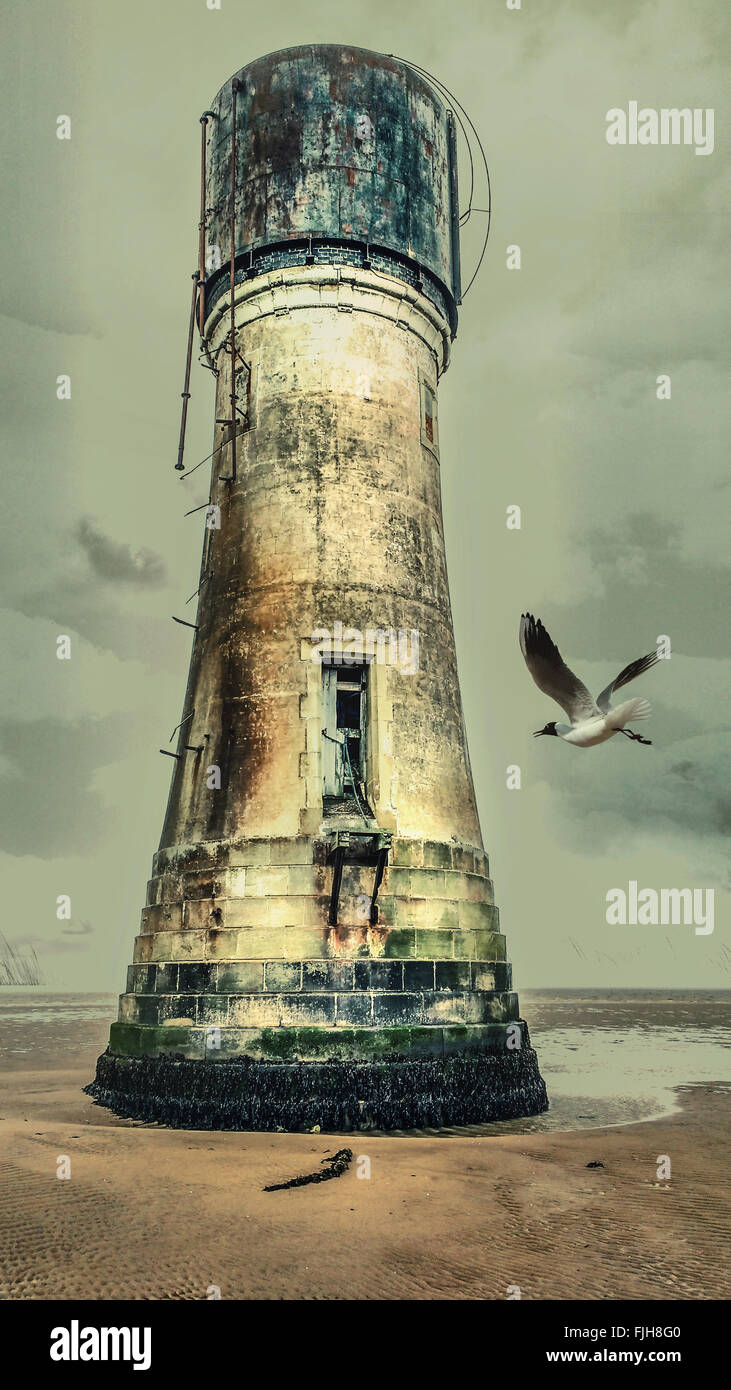 Old lighthouse on the beach with a seagull flying to it - Stock Image