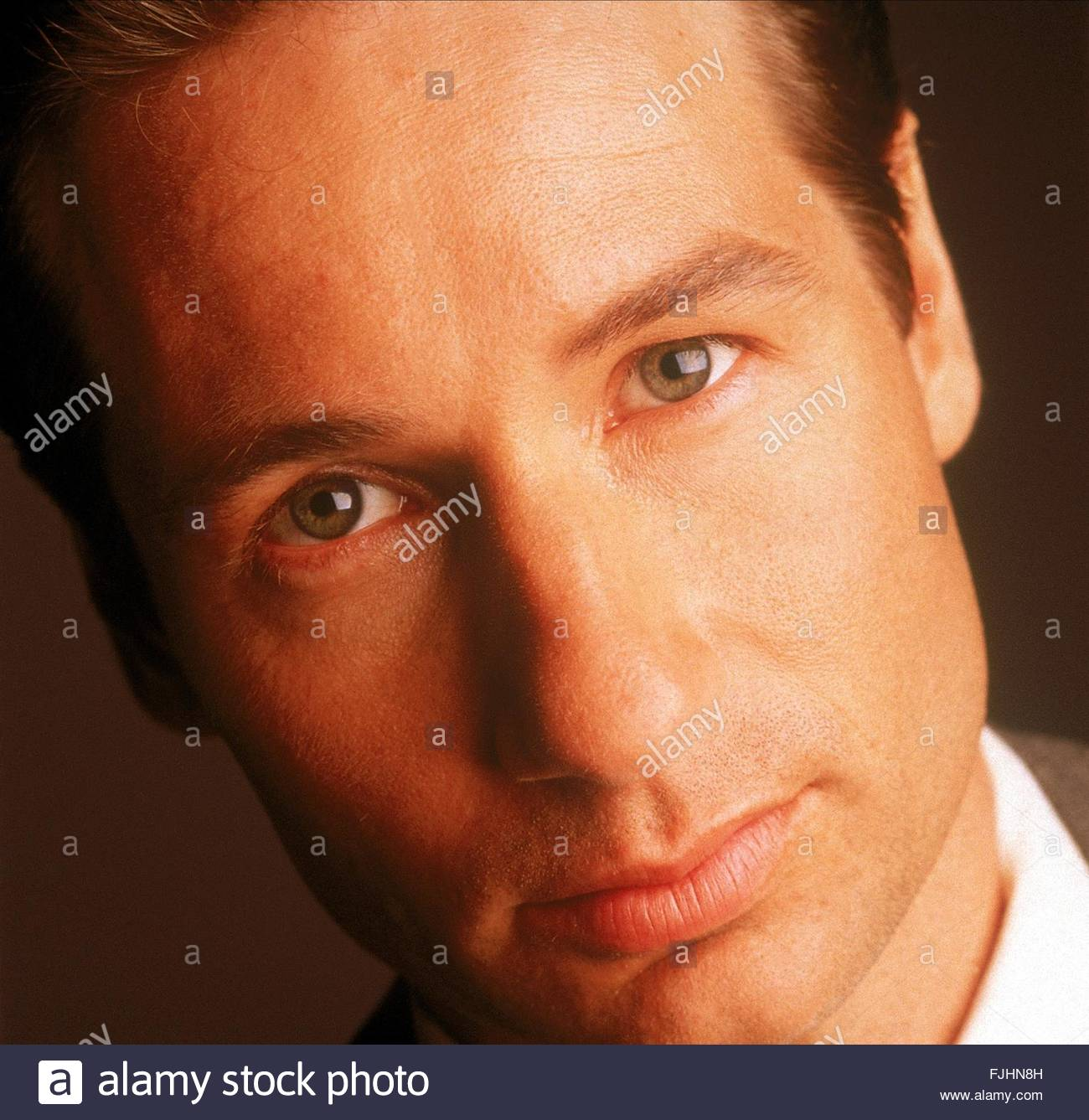 DAVID DUCHOVNY THE X FILES (1993) - Stock Image