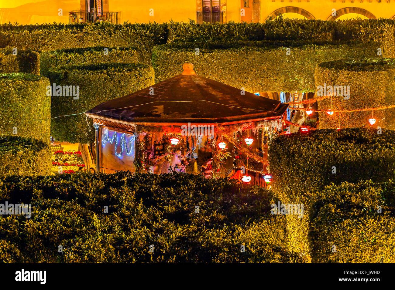 Jardin Town Tree Square San Miguel de Allende Mexico. - Stock Image