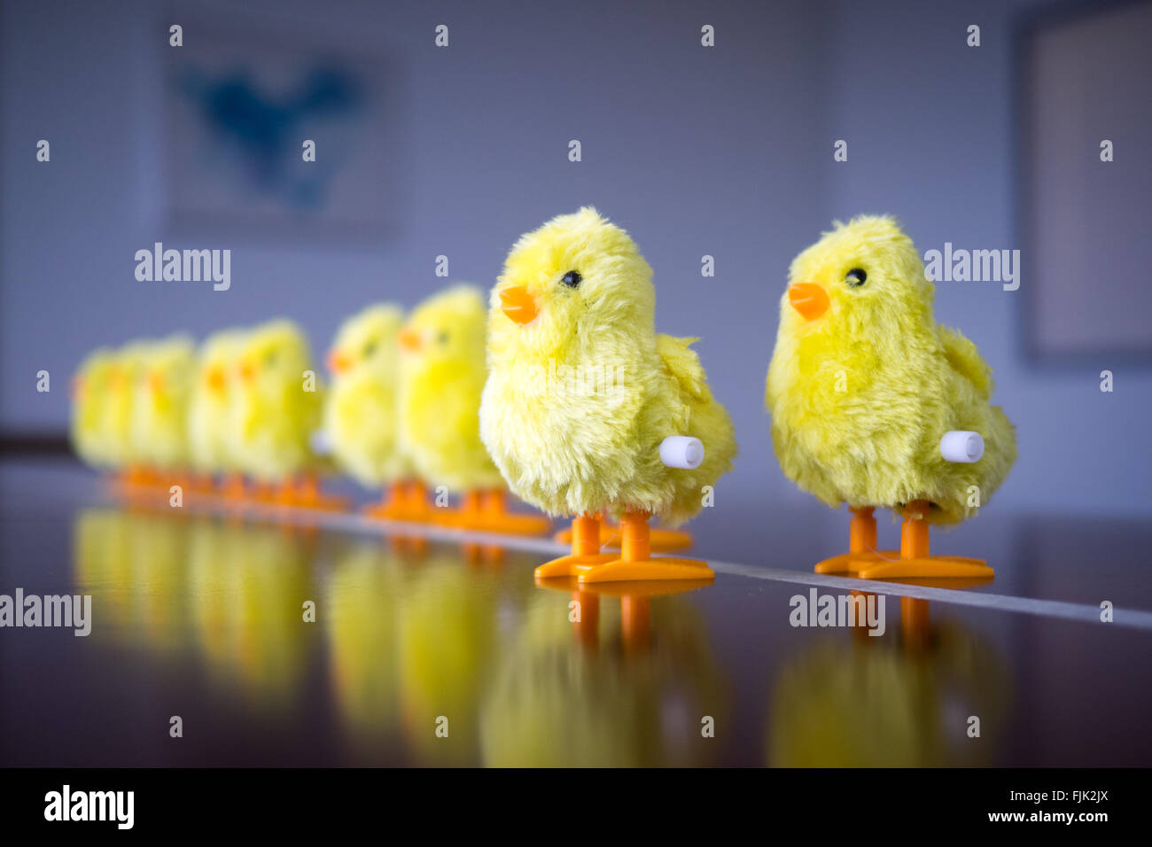 A wind-up baby chick toy. Concept: leadership, taking the first step, standing out from the crowd. - Stock Image
