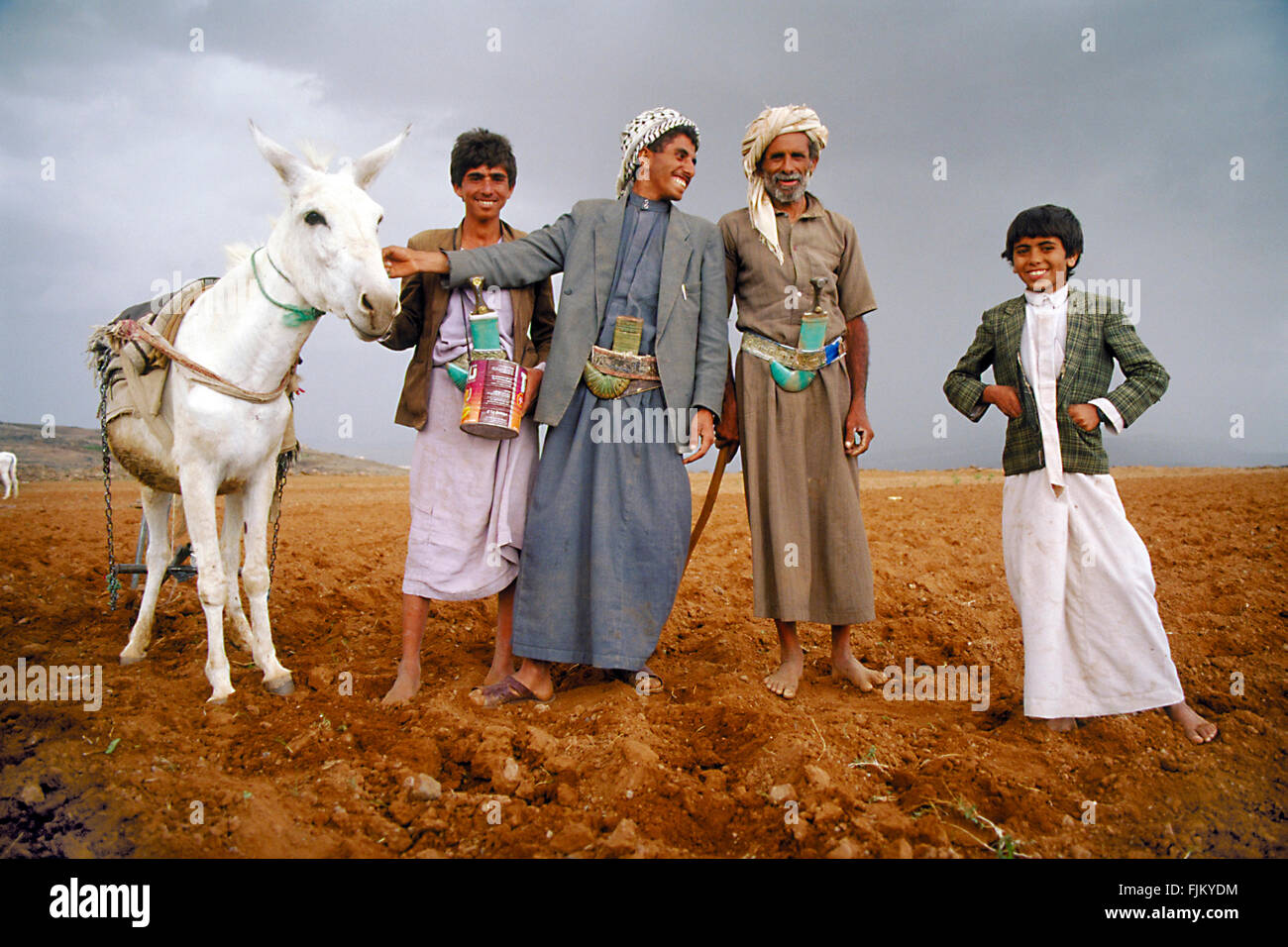 Father and sons together with their donkey posing for the photographer at a farm in Yemen. - Stock Image