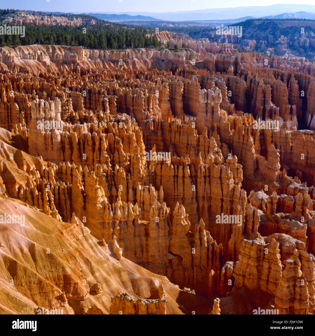 View at Bryce Canyon National Park, Utah. - Stock Image