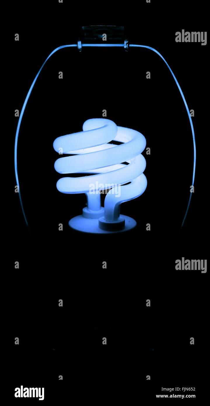 Close Up Of Light Bulb - Stock Image