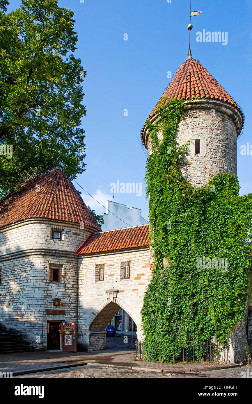 geography / travel, Estonia, Tallinn, old city gate, Viru Gate, entrance to the Lower city, Additional-Rights-Clearance Stock Photo