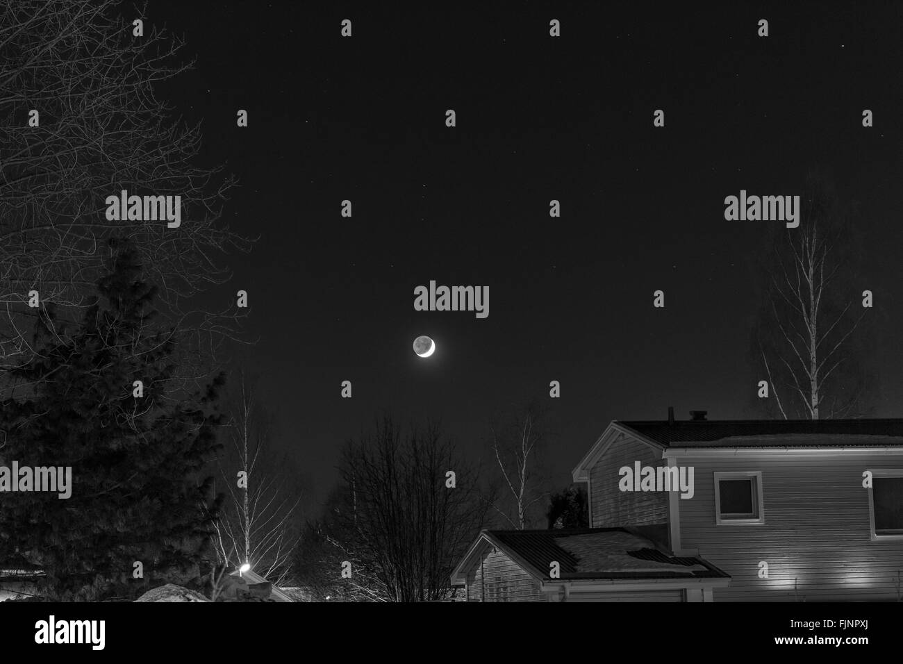 Low Angle View Of Moon Over Houses And Trees - Stock Image
