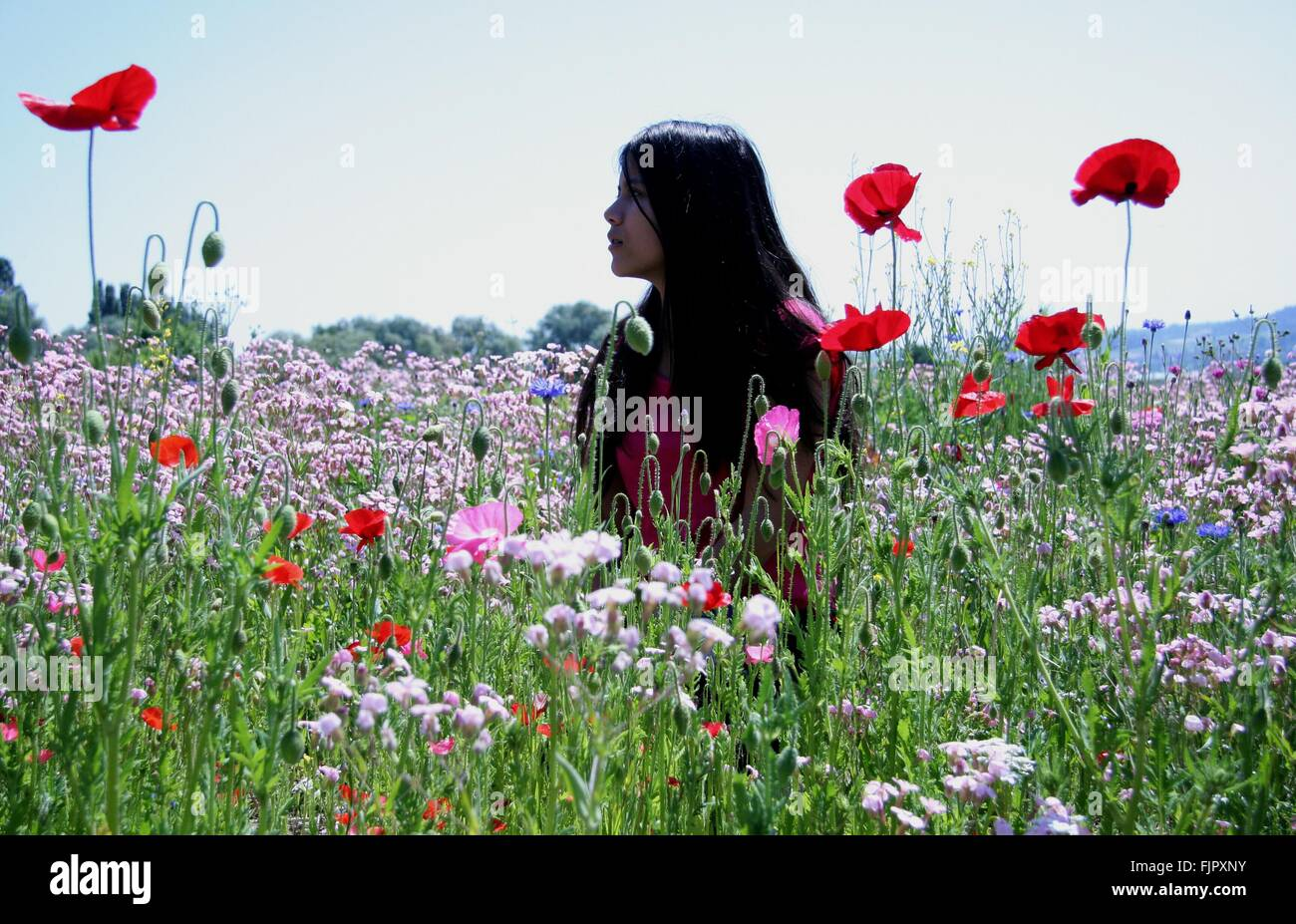 Young Woman Standing On Flower Field Against Sky - Stock Image