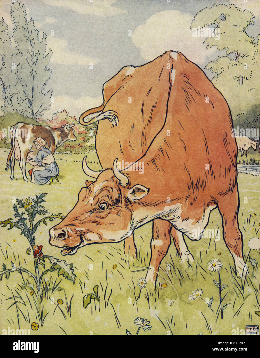 Tom Thumb sits on a thistle and is eaten by a cow, from The Golden Goose Book, 1905, illustrated by Leonard Leslie - Stock Image