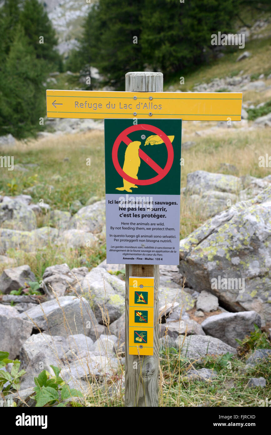 Sign Forbidding Feeding Marmots or No Feeding Marmots Sign near Allos Lake in the Mercantour National Park France - Stock Image