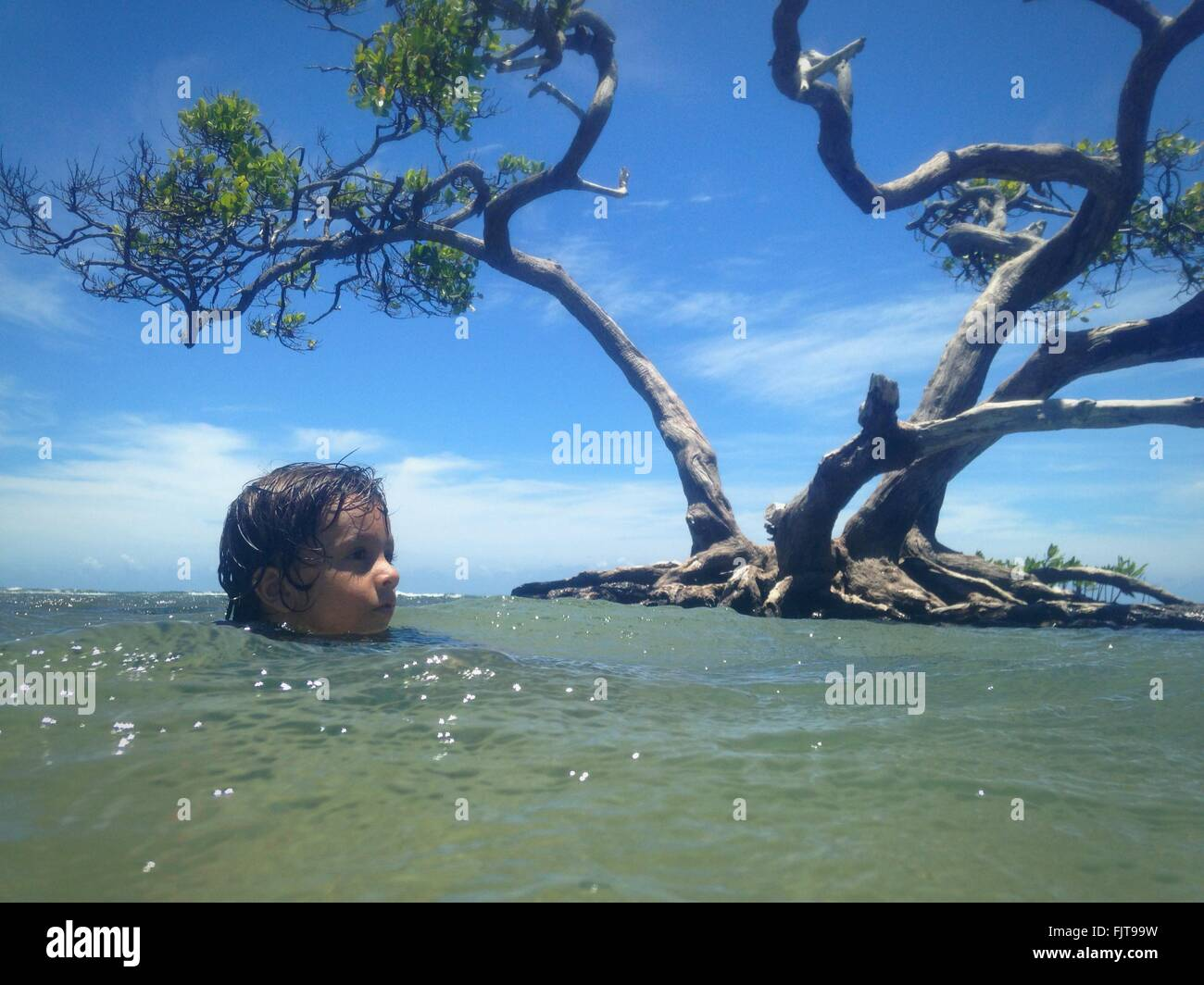 Boy Swimming In Lake Against Tree - Stock Image