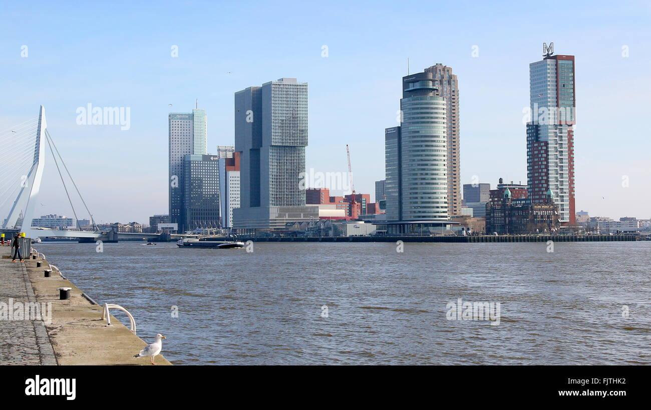 Iconic Rotterdam skyline. Erasmus bridge, Maastoren, De Rotterdam, World Port center & Montevideo skyscrapers - Stock Image