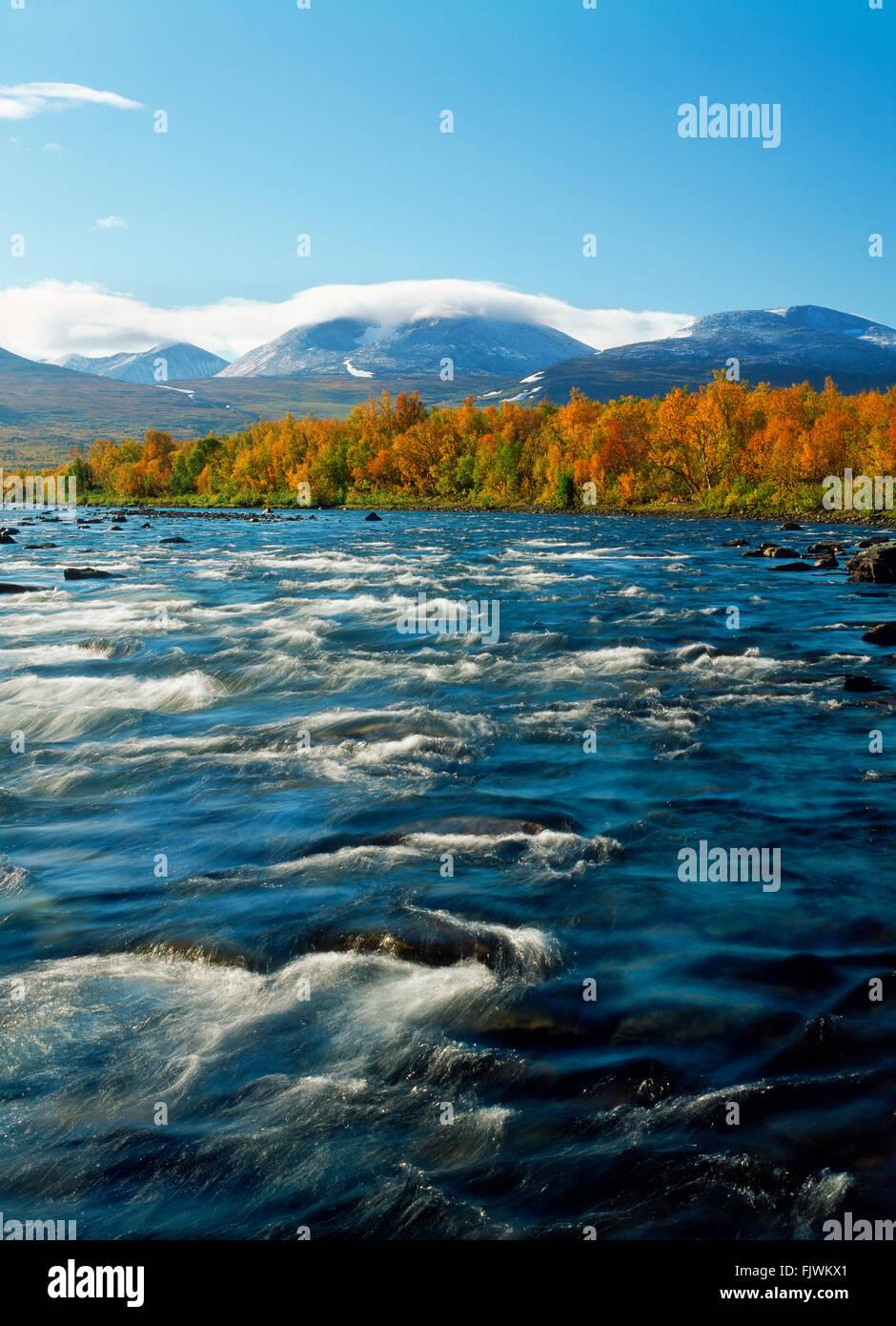 Abisko River in Abisko National Park in Swedish Lapland - Stock Image