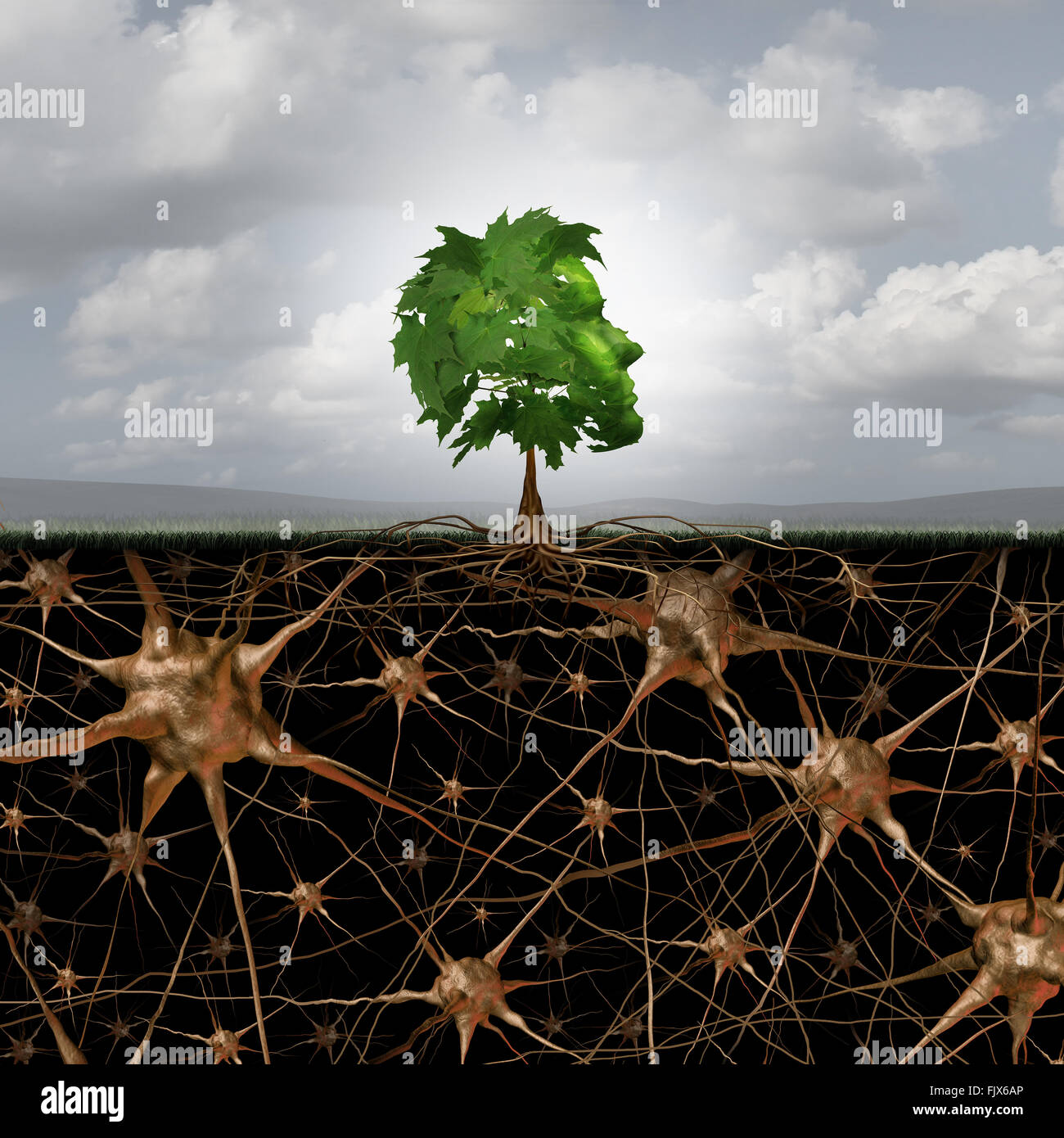 Neuron brain connection concept as a tree in a human head form with roots shaped as active growing neurons with Stock Photo