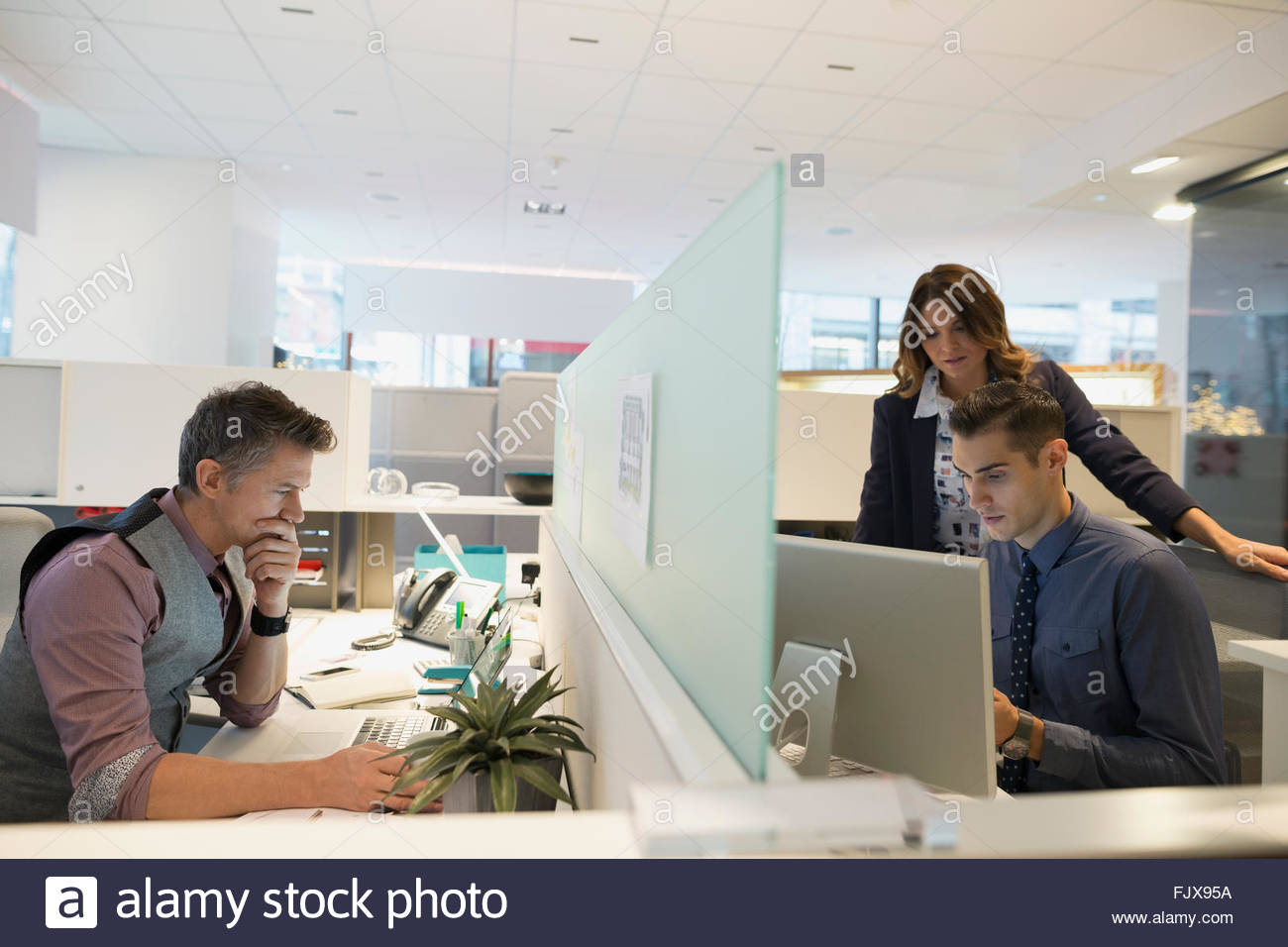 Business people working at cubicles in office - Stock Image