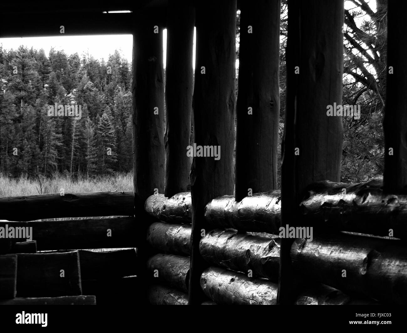 Interior Of Log Cabin - Stock Image
