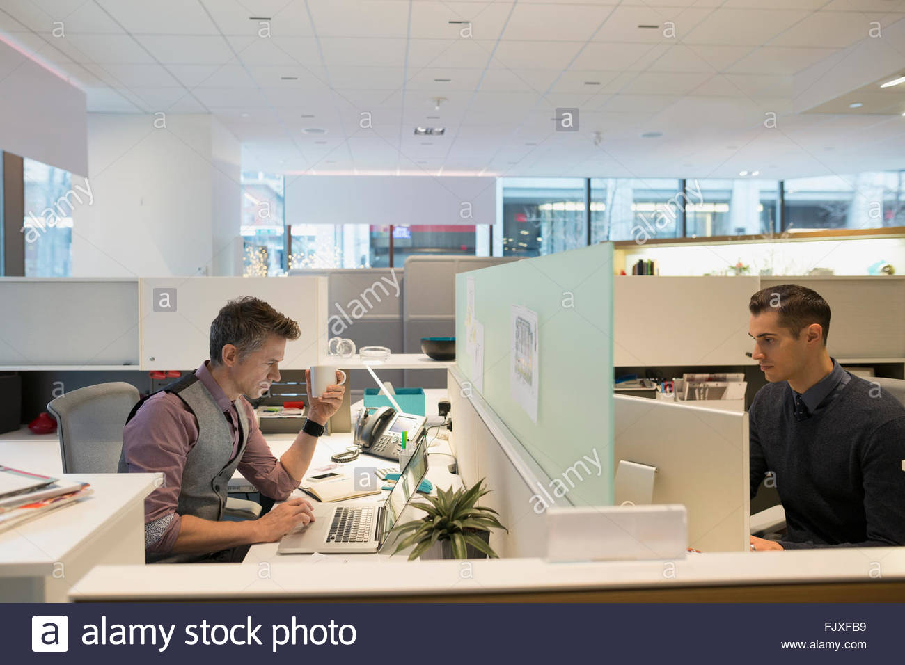 Businessmen working in cubicles in office - Stock Image