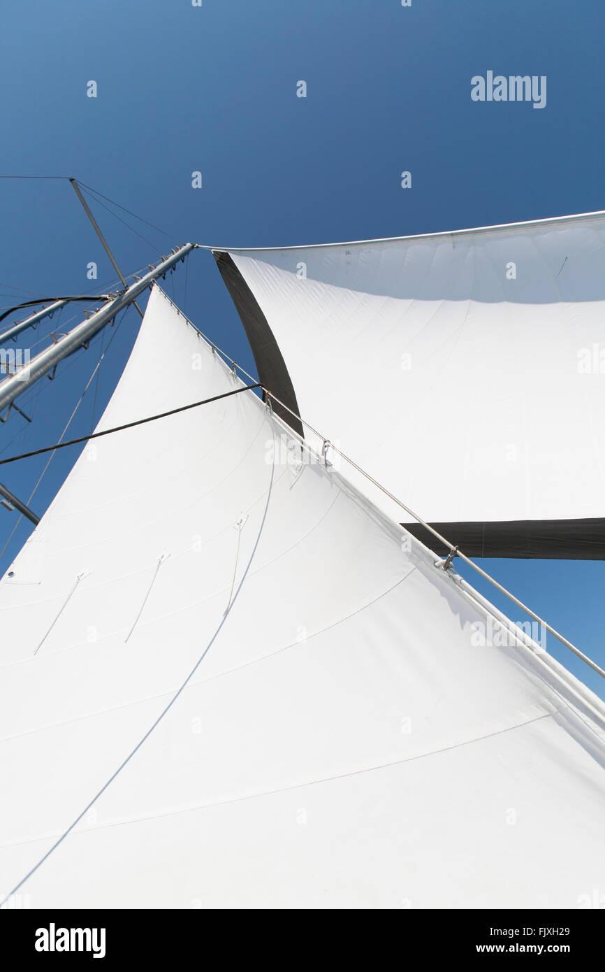 Looking up at a sailboats sails. - Stock Image