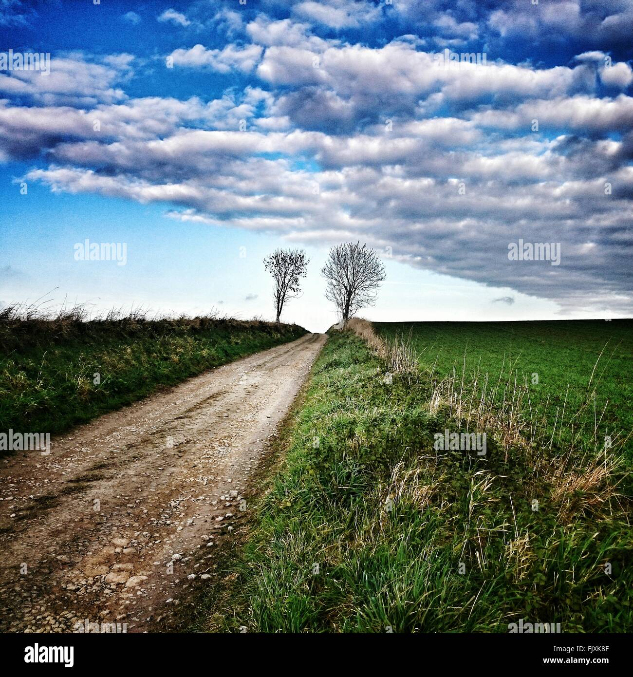 Dirt Road Amidst Grassy Field Against Cloudy Sky - Stock Image