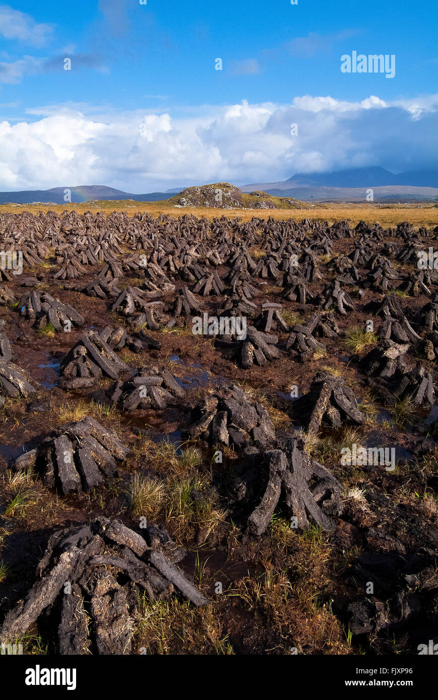 Peat Turf Stacked for drying Roundstone Bog Connemara Galway Ireland - Stock Image
