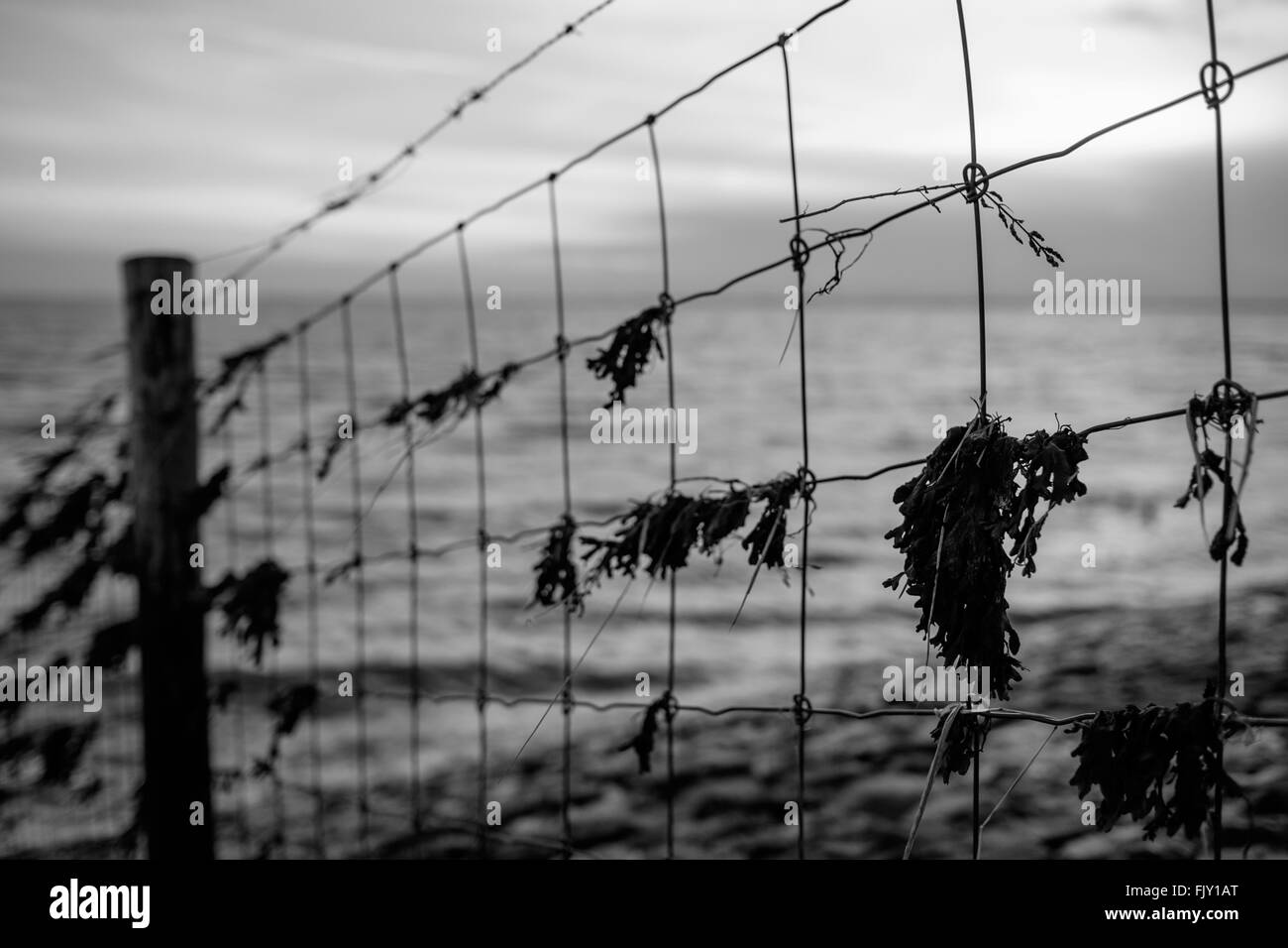 Dirty Railing Against Sea At Dusk - Stock Image