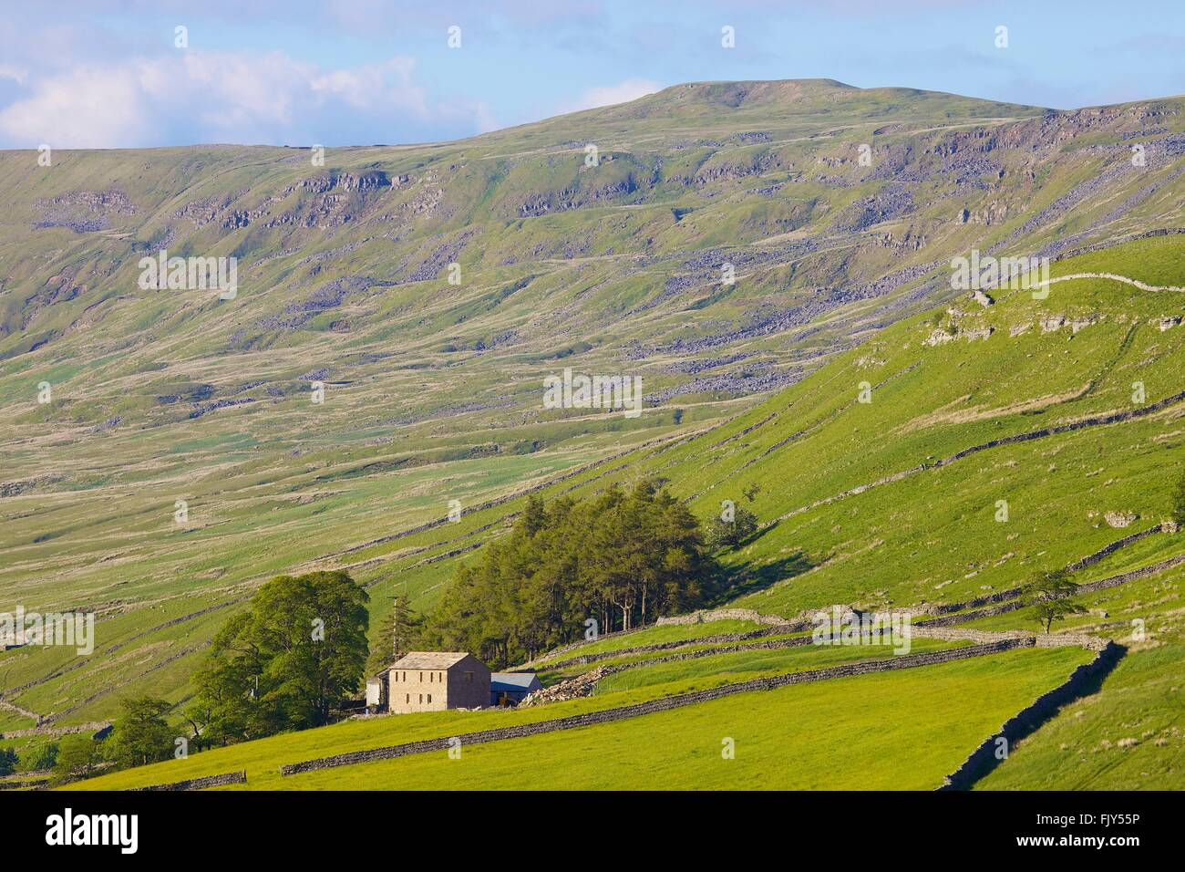 Yorkshire Dales National Park. Barn conversion on hillside. Hawes, Yorkshire, England, United Kingdom, Europe. - Stock Image
