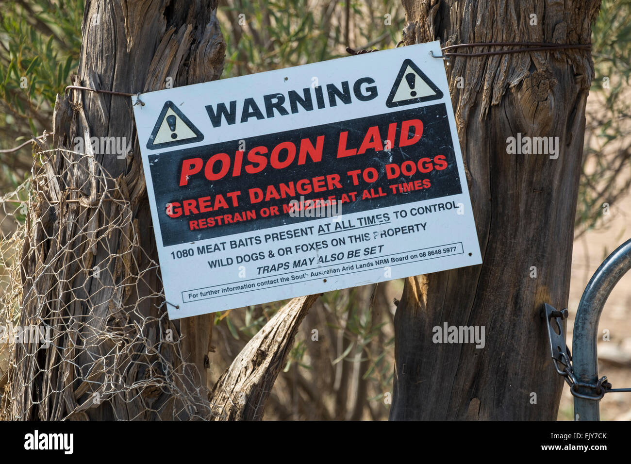 Poison bait for wild dogs and foxes warning sign in the Flinders Ranges in South Australia - Stock Image