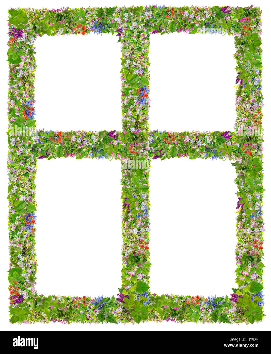 Green Spreng Eco windows frame abstract collage made from