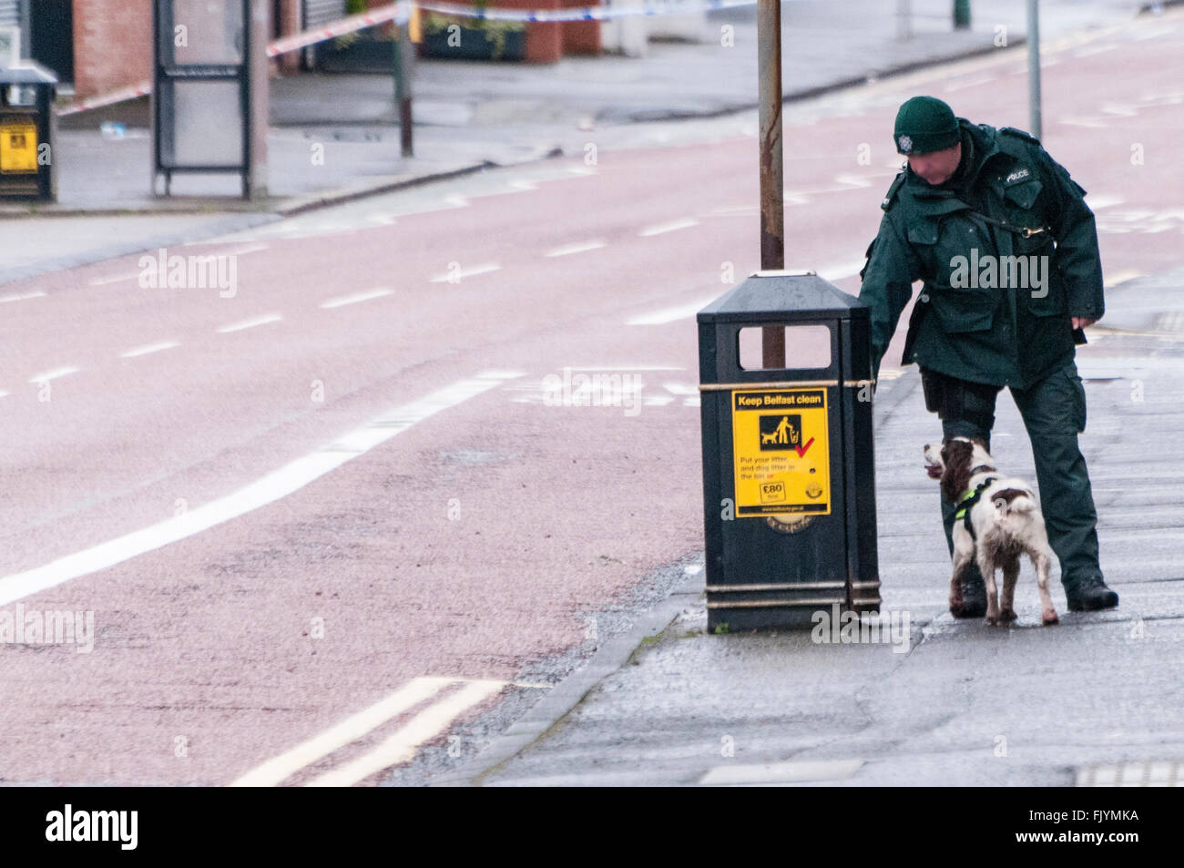 Belfast, Northern Ireland. 04 Mar 2016 - A  PSNI dog handler and his dog search for explosives in a street litter - Stock Image