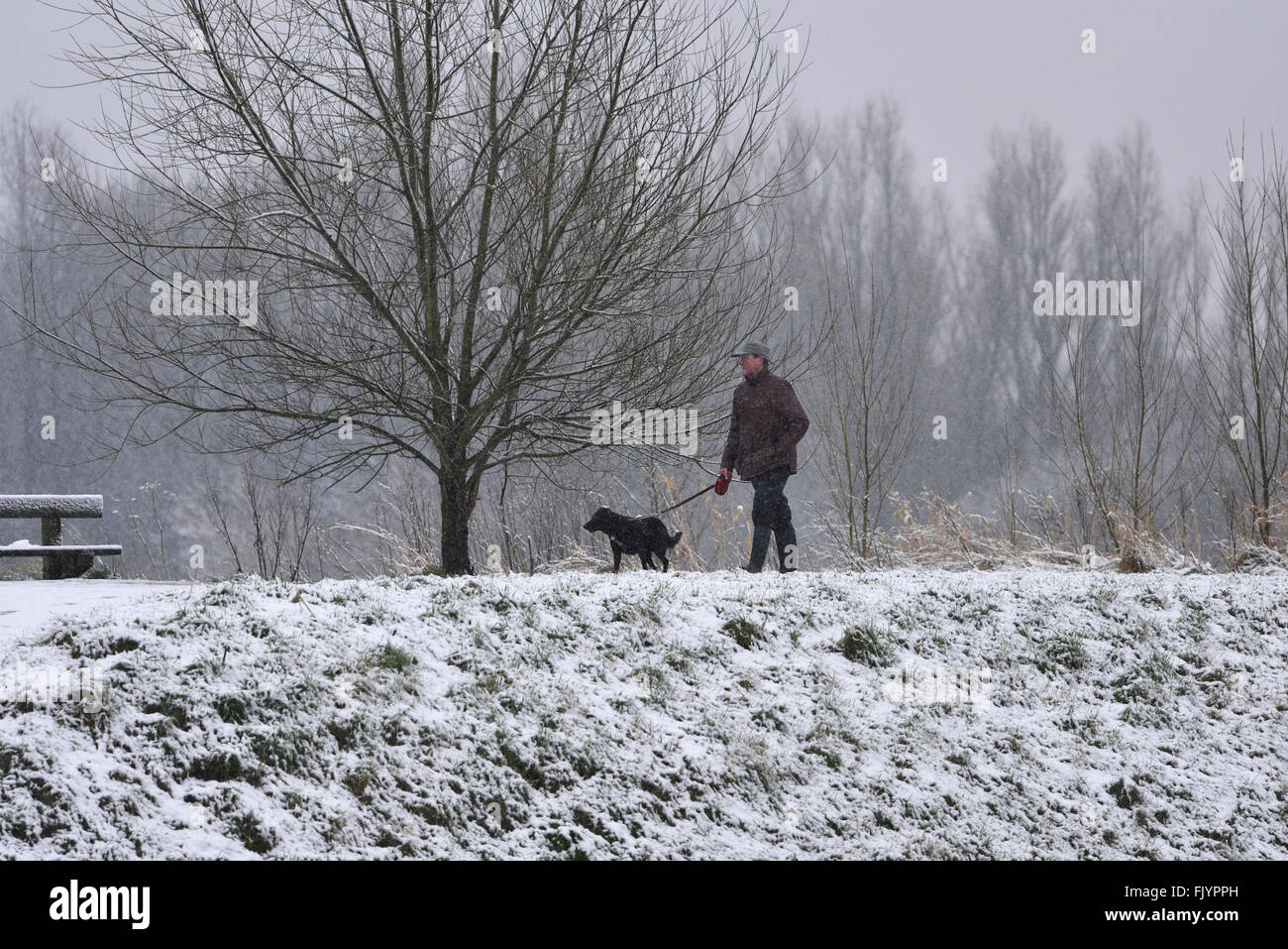 Manchester, UK. 4th March, 2016. A dog walker walks along the snow-covered bank of the River Mersey in Didsbury, Stock Photo