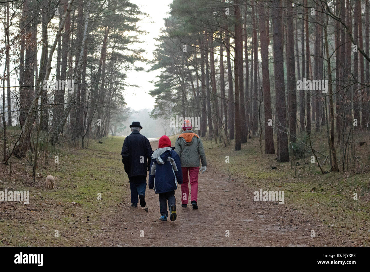 grandparents and grandson going for a walk - Stock Image