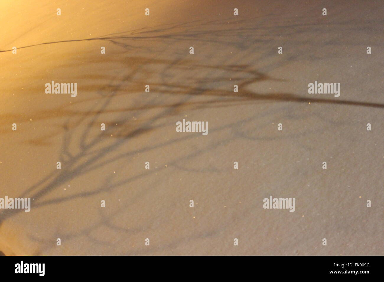 Shadows on the snow - Stock Image
